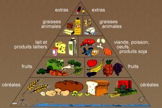 Le fruit du baobab source de fer l ment indispensable - Aliments riches en fer ...