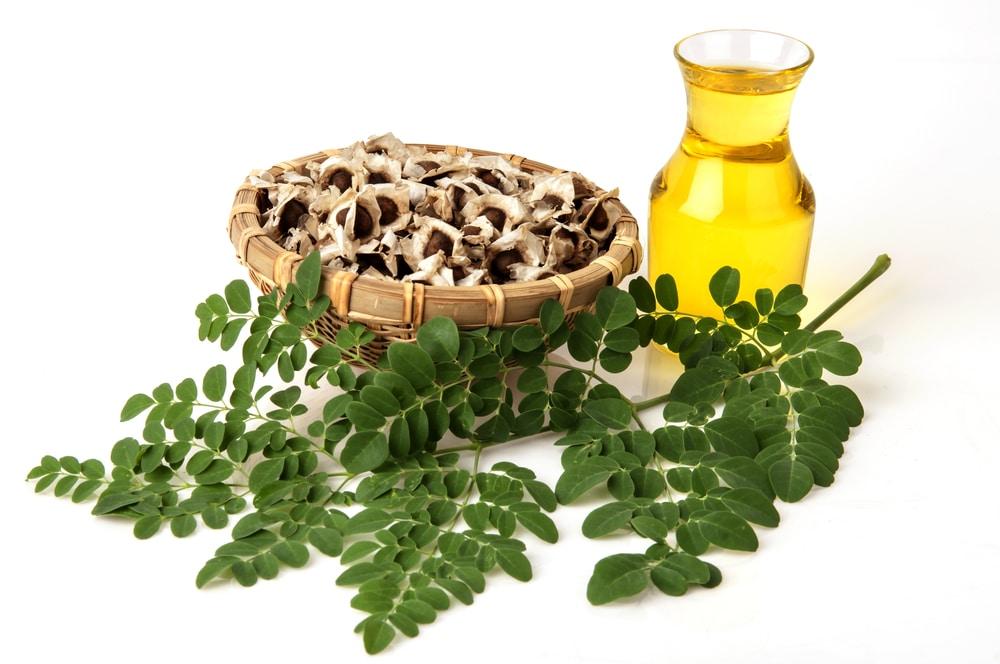 L'huile de moringa bio